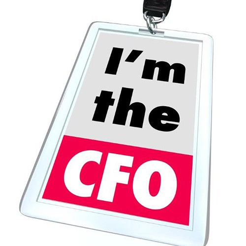 The Personal CFO and Why You May Need One